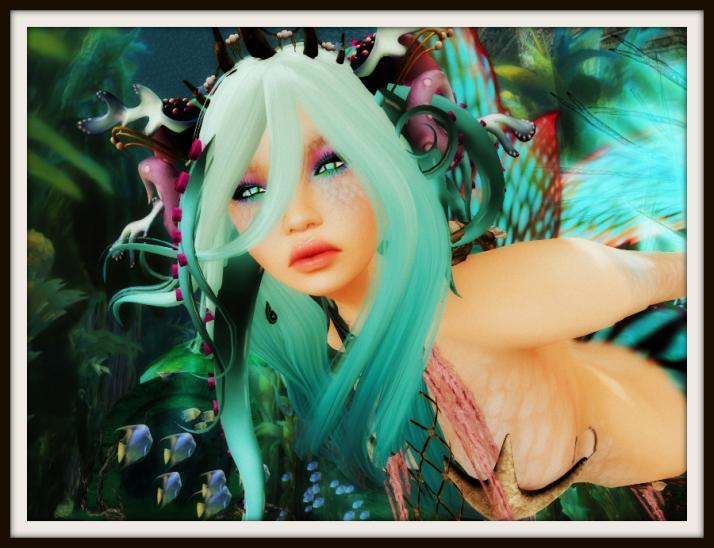mermaidpm7