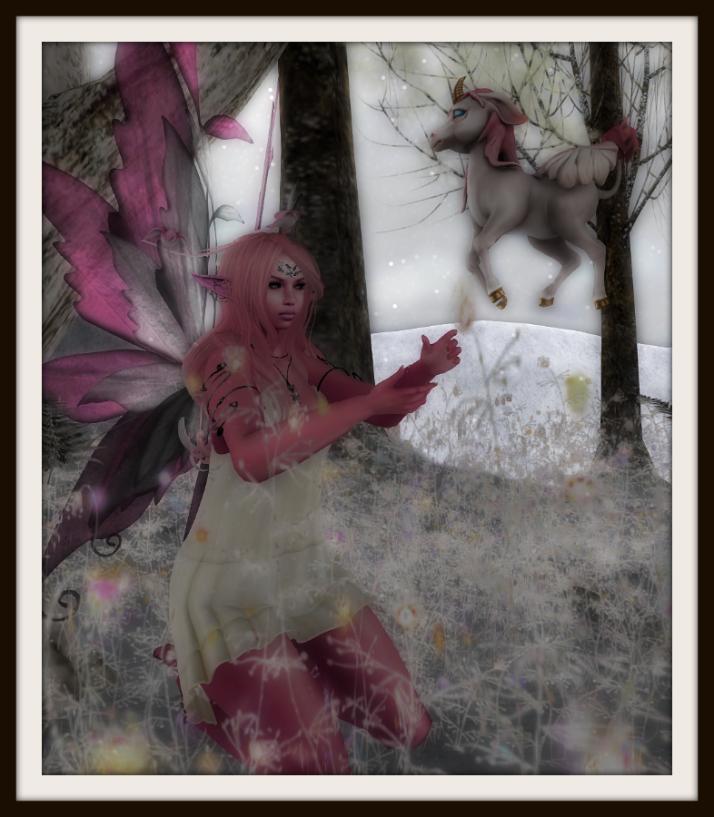PinkFairy1