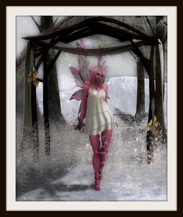 PinkFairy4